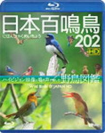【送料無料】シンフォレストBlu-ray 日本百鳴鳥 202 HD ハイビジョン映像と鳴き声で愉しむ野鳥図鑑/教養[Blu-ray]【返品種別A】