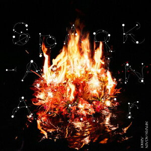 SPARK-AGAIN/Aimer[CD]通常盤【返品種別A】