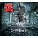 【送料無料】ディファイング・グラヴィティ/MR.BIG[CD]通常盤【返品種別A】