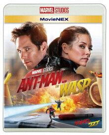 【送料無料】アントマン&ワスプ MovieNEX[Blu-ray&DVD]/ポール・ラッド[Blu-ray]【返品種別A】