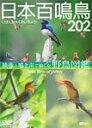【送料無料】シンフォレストDVD 日本百鳴鳥 202 映像と鳴き声で愉しむ野鳥図鑑/教養[DVD]【返品種別A】