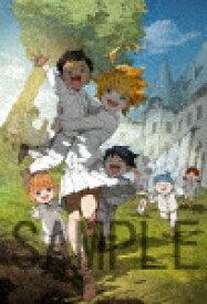 【送料無料】[枚数限定][限定版]約束のネバーランド 1(完全生産限定版)/アニメーション[DVD]【返品種別A】