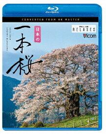 【送料無料】ビコム Relaxes BD 日本の一本桜 4K撮影作品/BGV[Blu-ray]【返品種別A】