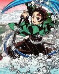 鬼滅の刃1(完全生産限定版) アニメーション ANZX-14771/2