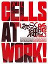 【送料無料】[限定版]はたらく細胞 3(完全生産限定版)/アニメーション[DVD]【返品種別A】
