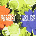 Passion Flower/T-SQUARE[HybridCD]通常盤【返品種別A】
