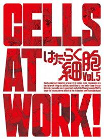 【送料無料】[限定版]はたらく細胞 5(完全生産限定版)/アニメーション[DVD]【返品種別A】