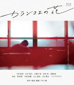 【送料無料】カランコエの花/今田美桜[Blu-ray]【返品種別A】