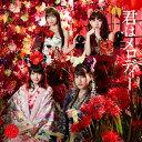 君はメロディー(通常盤/Type E)/AKB48[CD+DVD]【返品種別A】