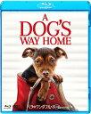 【送料無料】ベラのワンダフル・ホーム ブルーレイ&DVDセット/アシュレイ・ジャッド[Blu-ray]【返品種別A】