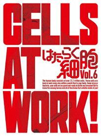 【送料無料】[限定版]はたらく細胞 6(完全生産限定版)/アニメーション[DVD]【返品種別A】
