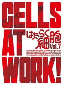 【送料無料】[限定版]はたらく細胞 7(完全生産限定版)/アニメーション[DVD]【返品種別A】