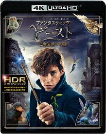 【送料無料】ファンタスティック・ビーストと魔法使いの旅<4K ULTRA HD&2D ブルーレイセット>/エディ・レッドメイン[Blu-ray]【返品種別A】
