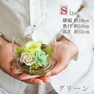 アップルドロップ【Size】