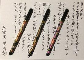 【送料無料】不思議筆ペン〜ペイフォワードブラッシュ(PFB)〜 1万人が体験した不思議色鉛筆のエネルギーを転写した筆ペン不思議アイテム波動グッズ
