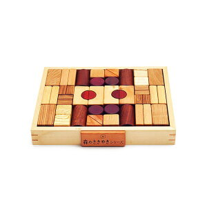 在庫限り 森のささやき クリエイティブブロックス 積み木 ブロック 木のおもちゃ 知育玩具 男の子 女の子 出産祝い お誕生日プレゼント エド・インター おもちゃ