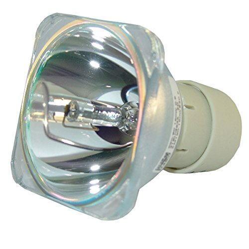 リコー RICOH PJ WX4240N 交換用純正バルブ(球のみ) OB 308991 リコー プロジェクター用交換ランプ 送料無料 通常納期1週間〜