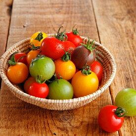 ワンダーファームトマトづくしセット(お試しジュース付)送料込