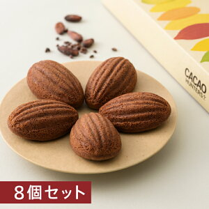 CACAO HUNTERS Plus カカオケイク8個セット