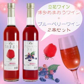 立花ワイン博多あまおうワイン+ブルーベリーワインセット(500ml×2本箱入)【化粧箱入】