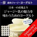 蒜山ジャージーヨーグルト20個セット^送料無料/ラッピング対応17-15-04