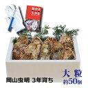 岡山産 極上 殻付き牡蠣 大粒約50個 3年物牡蠣 殻付き 送料無料 お歳暮 おひなまつり お誕生に 牡蠣 殻付き