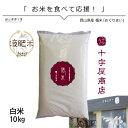 新米予約 米 10kg 米10 きぬむすめ10kg 令和2年産 循米 めぐり米 岡山県真庭産 お米10kg 送料無料 美味しいお米