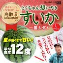 【鳥取県北栄町】とくちゃん想いやりすいか Lサイズ(約6kg)^送料無料 皮の近くまで甘いスイカ 贈答にも17-04-10