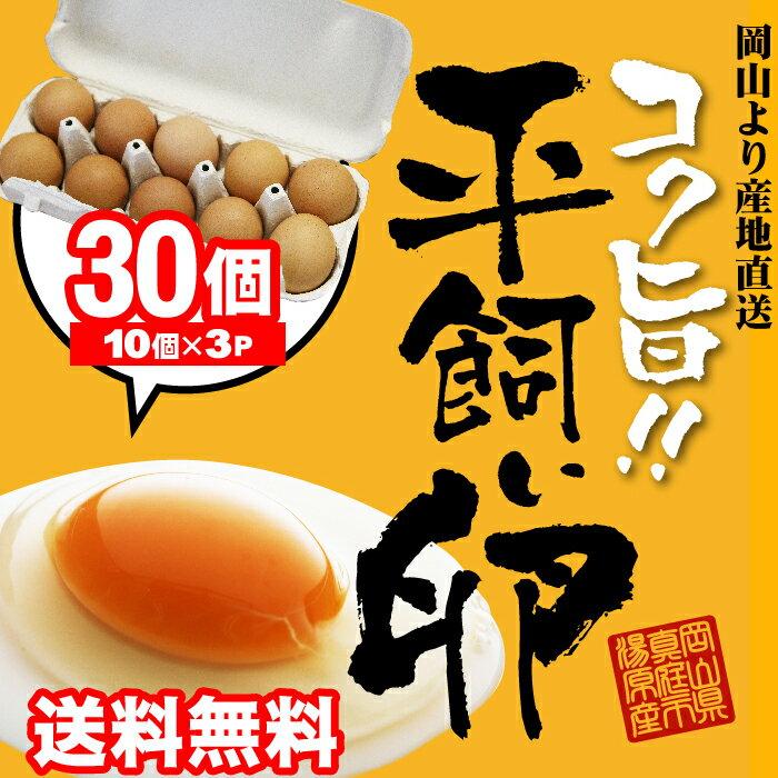 コク旨濃厚 平飼い卵30個入 10個包装X3 送料無料 たまご 玉子 卵 無選別 こだわり卵 たまごごはんにぴったりホワイトデー母の日ありがとうギフト 無精卵