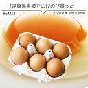 コク旨濃厚 平飼い卵10個入^【たまご 玉子 卵 無選別 こだわり卵 たまごごはんにぴったり】