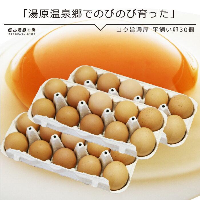 コク旨濃厚 平飼い卵30個入 10個包装X3 送料無料 たまご 玉子 卵 無選別 こだわり卵 たまごごはんにぴったりホワイトデー母の日ありがとうギフト 無精卵 お歳暮