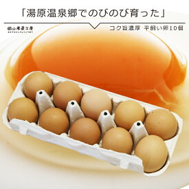 平飼い 卵コク旨濃厚 平飼い卵10個入 たまご 玉子 卵 無選別 こだわり卵 たまごごはんにぴったり 無精卵
