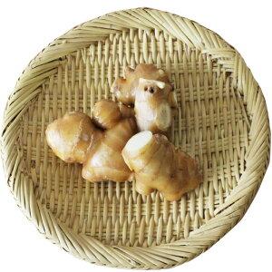 野菜 しょうが 200g前後  単品野菜 薬味 ショウガ茶 生姜漬けに 岡山県美咲町産