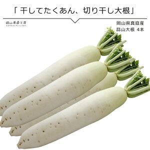 蒜山大根 4本 岡山県真庭産 単品野菜