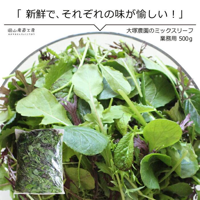 野菜 ミックスリーフ大袋500g 単品野菜 岡山県真庭産 大塚農園 サラダ