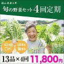 定期野菜セットおまかせ13品×4回分 ^