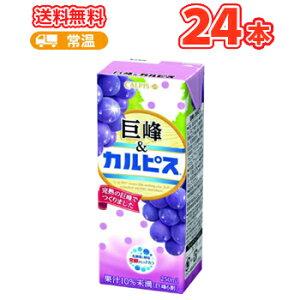 エルビー 巨峰&カルピス ぶどう 【250ml】×24本 〔乳酸菌飲料 ブドウ〕
