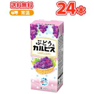 エルビーぶどう&「カルピス」 【250ml】×24本 〔乳酸菌飲料 ブドウ〕