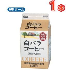 白バラコーヒー【500ml×1本】 クール便/