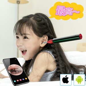 Bebird 耳かき カメラ スコープ 3.9mm 超小型レンズ WiFi接続 無線 耳掃除 22種類耳かき部品 みみかき 耳鏡 200万画素 LED 日本初 プレゼント