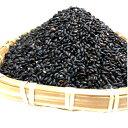 【送料無料】【30年】黒米 特別栽培【減農薬栽培】玄米 試食米300g