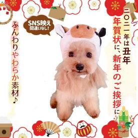 干支かぶり帽 リトルモーモー【4L】[3173] うし 大型犬 丑年 子年 年賀状 ウシ 牛 帽子ペット 犬 猫2021 被り物 お正月
