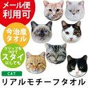 リアルモチーフタオル: 猫柄 ねこ ネコ 雑貨 グッズ 日本製 国産 今治 タオル ハンカチ ハンカチタオル トラ猫 キャット グレー シャム…