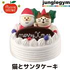 デコレコンコンブルクリスマスまったりマスコット猫とサンタケーキdecoleconcombre