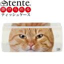 ティッシュカバー ティッシュケース テンテ TENT ANIMAL FACE: フテネコ ふて猫 ふてねこ 壁掛け可 雑貨 グッズ
