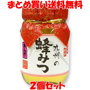 九州の蜂みつ <れんげ>蜂蜜 ハチミツ 川口養蜂場 国産はちみつ あさイチ 500g×2個セットまとめ買い送料無料