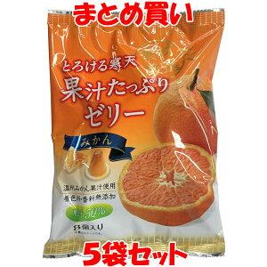 片山食品 果汁たっぷりゼリー みかん (26g×8個)×5袋セット まとめ買い