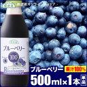 【果汁100%】ブルーベリー100 500ml×1本 順造選 ストレート ブルーベリージュース ジュース