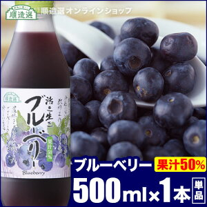 順造選 ブルーベリー (果汁50%ブルーベリージュース)500ml×1本