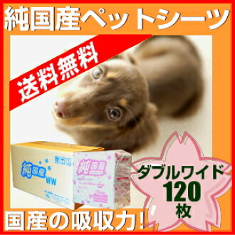 Purely domestic pet sheet double wide size 120 pieces * pumping 1 fee free * for 02P28oct13